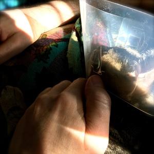 Findus pustar ut i tratt i husses famn