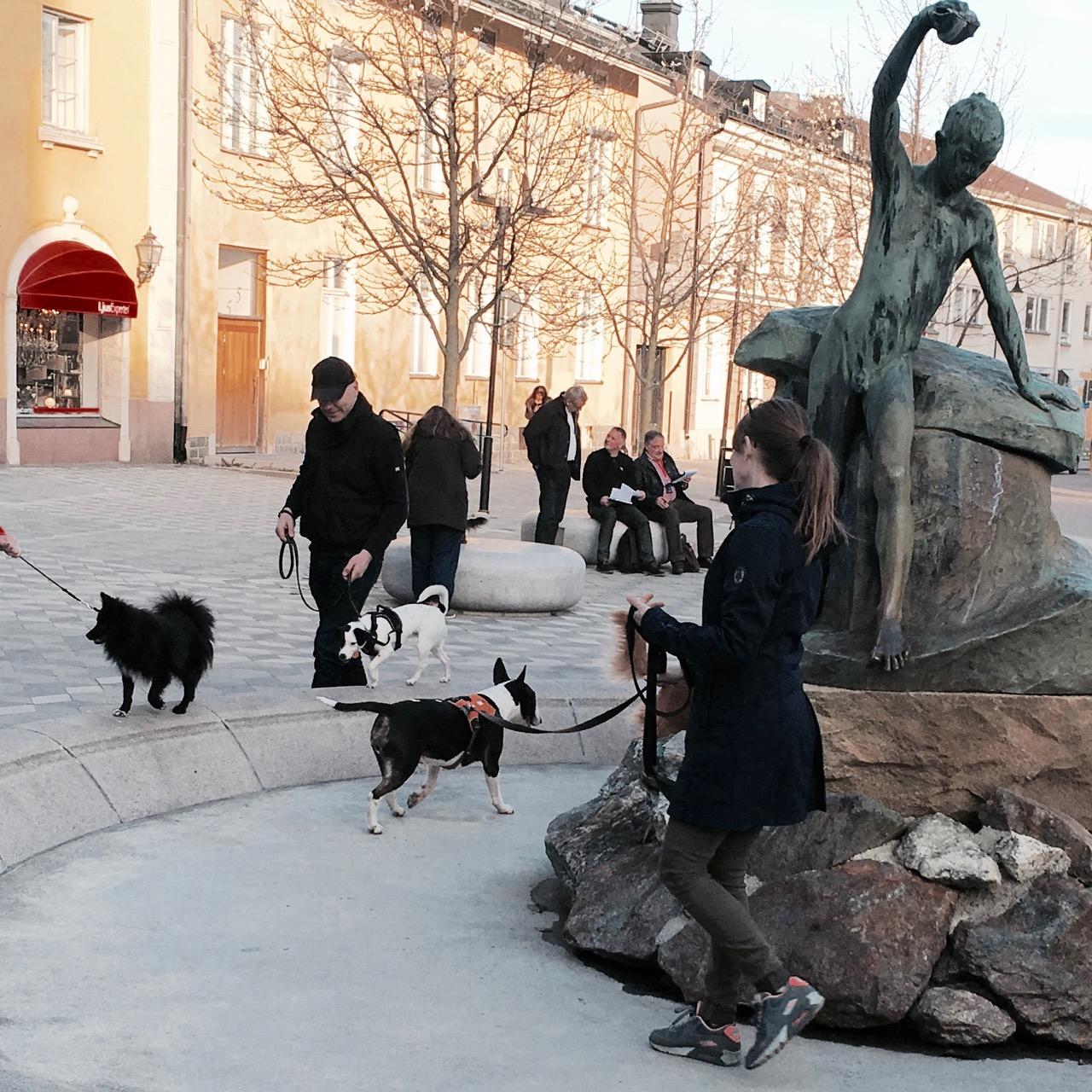 Disa balanserar på fontänen i Södertälje