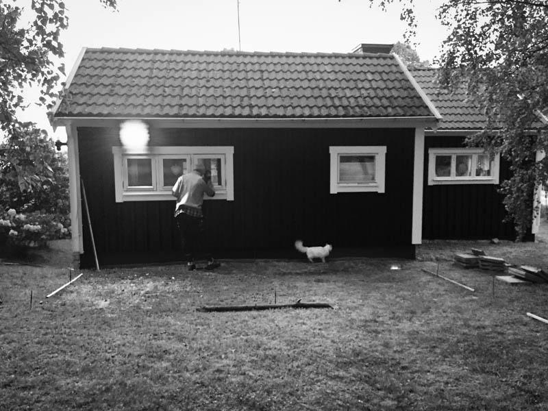 Vi planerade för kattgården under kalla junikvällar 2015. Grannkatten Singa kom med synpunkter.