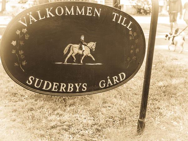 Välkommen till Suderbys Gård! Hundträff Suderbys Gård 2016