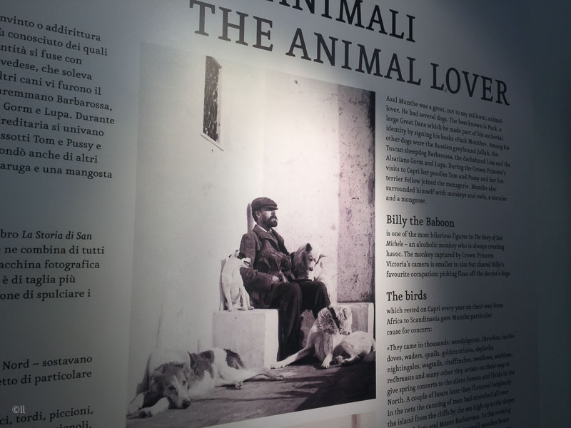 Axel Munthe, the Animal Lover. San Michele, Capri.